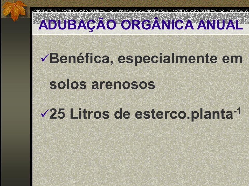 ADUBAÇÃO ORGÂNICA ANUAL Benéfica, especialmente em solos arenosos 25 Litros de esterco.planta -1