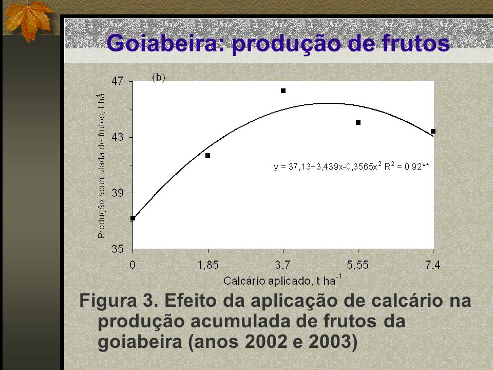 Goiabeira: produção de frutos Figura 3. Efeito da aplicação de calcário na produção acumulada de frutos da goiabeira (anos 2002 e 2003)