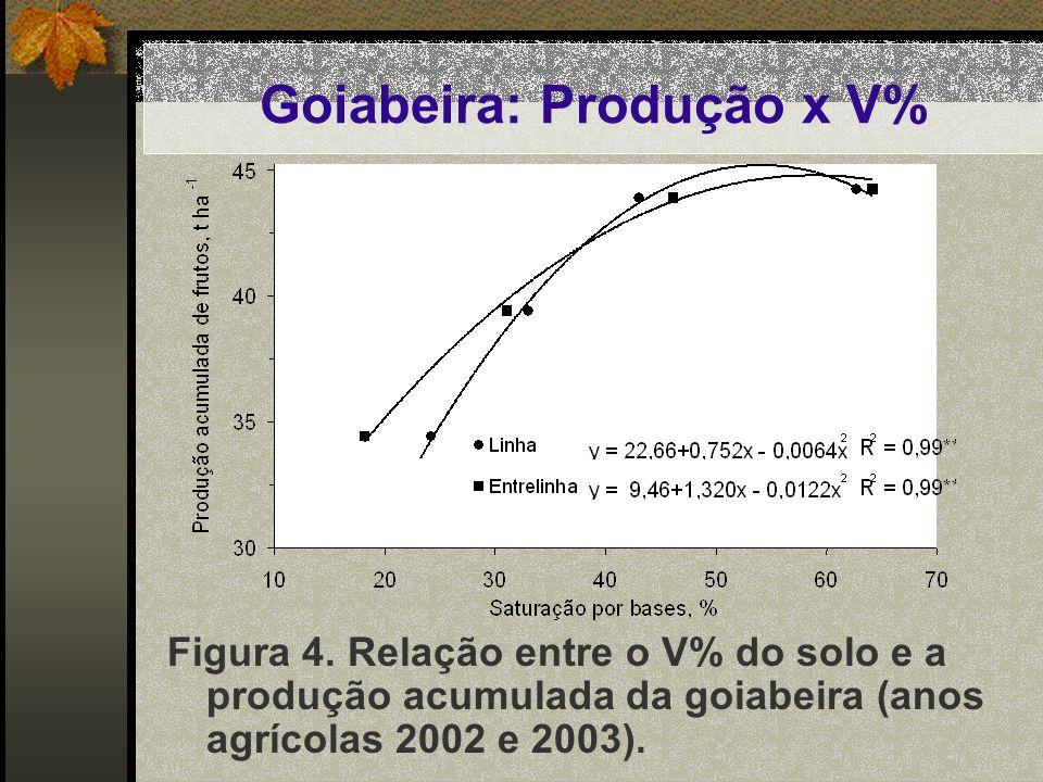Figura 4. Relação entre o V% do solo e a produção acumulada da goiabeira (anos agrícolas 2002 e 2003). Goiabeira: Produção x V%