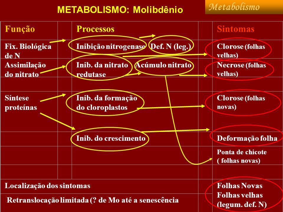 METABOLISMO: Molibdênio Função Processos Sintomas Fix. Biológica de N Inibição nitrogenase Def. N (leg.) Clorose (folhas velhas) Assimilação do nitrat