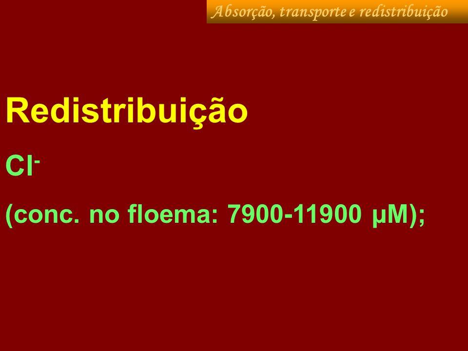 Cl- mobilidade intermediária no floema (Depende da planta) Alta mobibilidade.= soja/feijão/arroz/tomate/alface/repolho, beterraba; Baixa mobilidade: milho/abobrinha Absorção, transporte e redistribuição