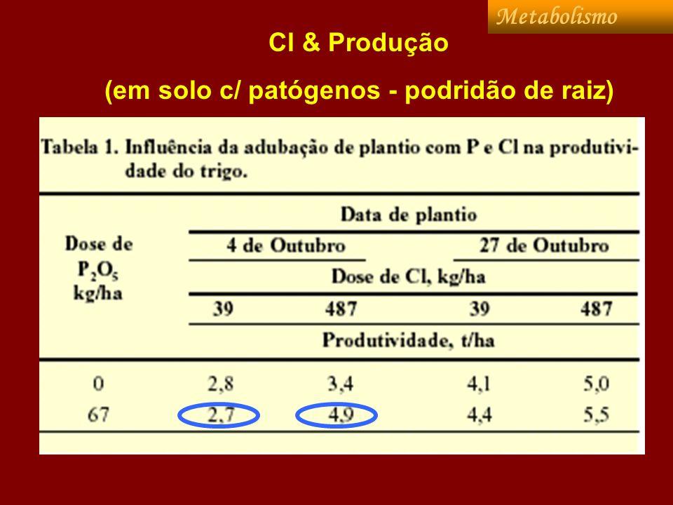 Cl & Produção (em solo c/ patógenos - podridão de raiz) Metabolismo