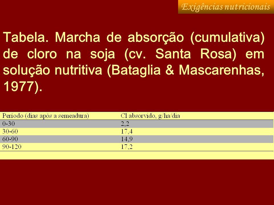 Tabela. Marcha de absorção (cumulativa) de cloro na soja (cv. Santa Rosa) em solução nutritiva (Bataglia & Mascarenhas, 1977). Exigências nutricionais
