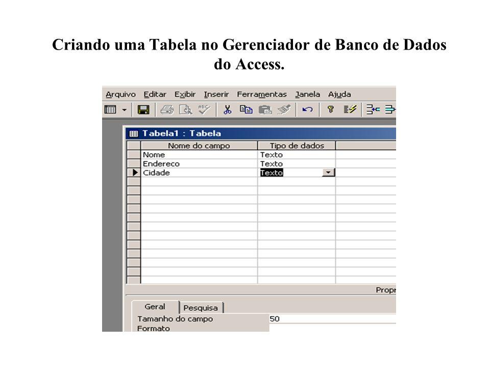 Criando uma Tabela no Gerenciador de Banco de Dados do Access.