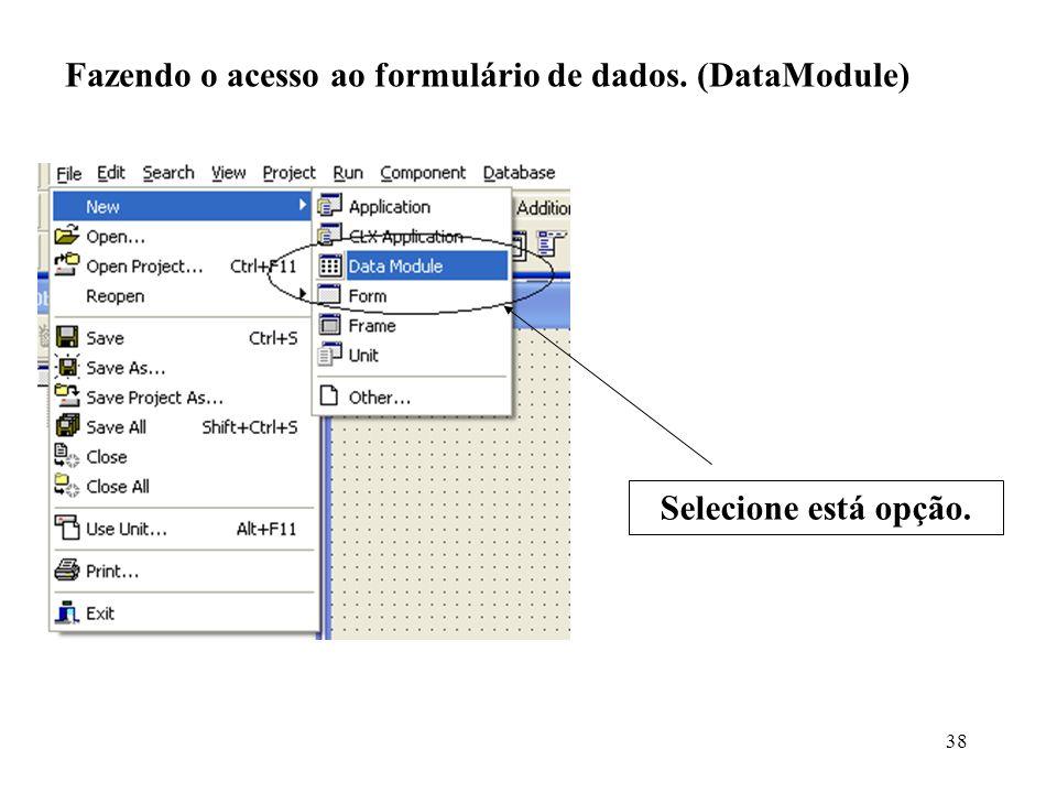 Fazendo o acesso ao formulário de dados. (DataModule) Selecione está opção. 38