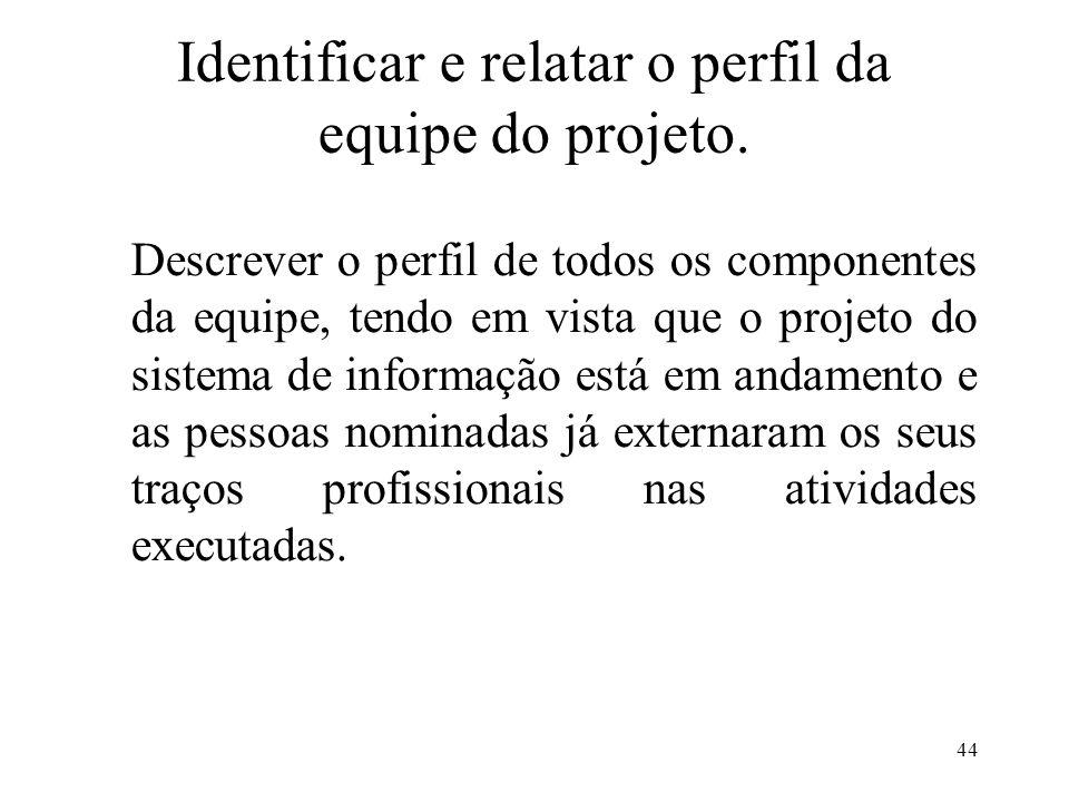 44 Identificar e relatar o perfil da equipe do projeto. Descrever o perfil de todos os componentes da equipe, tendo em vista que o projeto do sistema