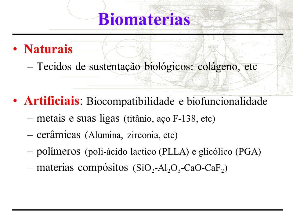 Algumas sub-áreas da Engenharia Biomédica Biomateriais Bioengenharia Engenharia Clínica Informática Médica Diagnósticos e Análises Instrumentação Biomédica Engenharia de Reabilitação