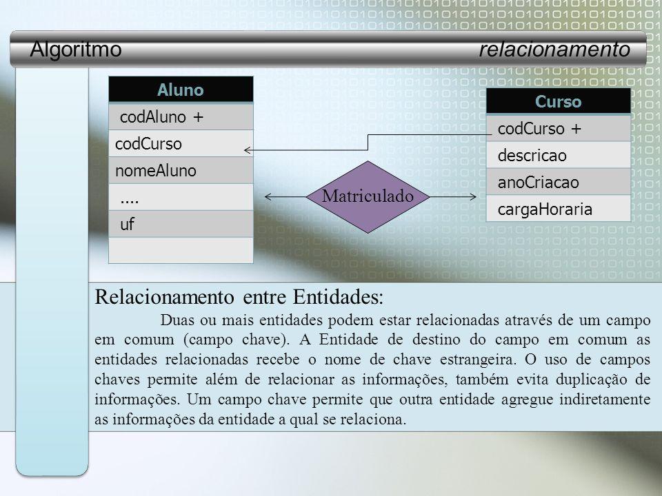 Relacionamento entre Entidades: Duas ou mais entidades podem estar relacionadas através de um campo em comum (campo chave).