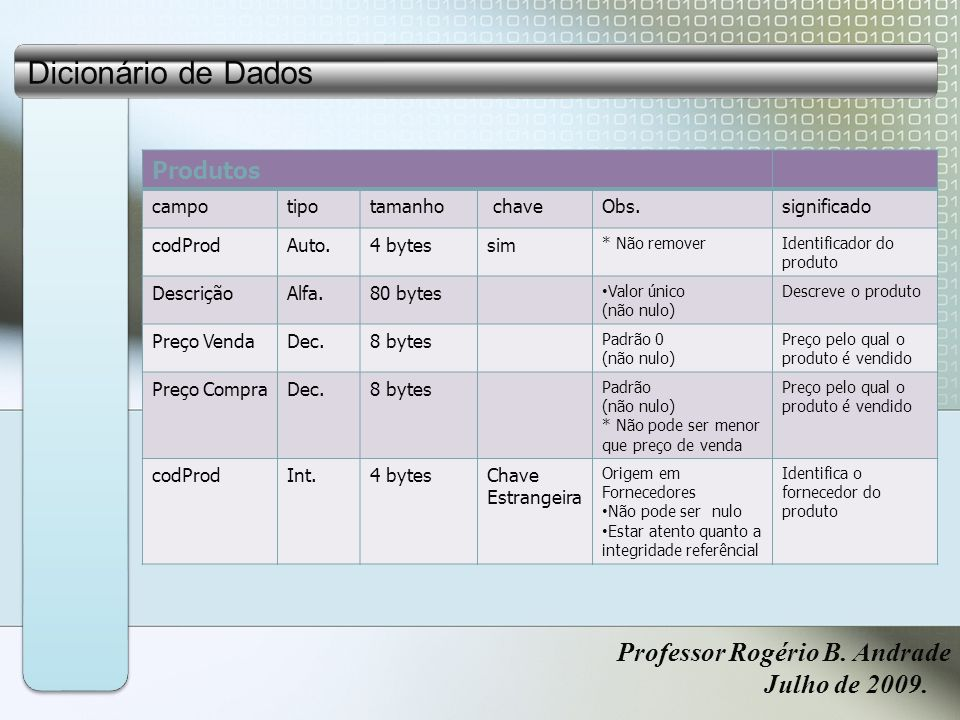 Dicionário de Dados Professor Rogério B.Andrade Julho de 2009.
