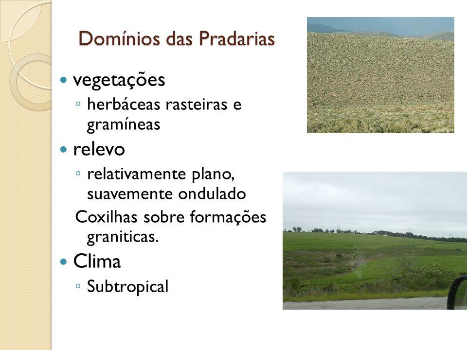 Domínios das Pradarias vegetações herbáceas rasteiras e gramíneas relevo relativamente plano, suavemente ondulado Coxilhas sobre formações graniticas.