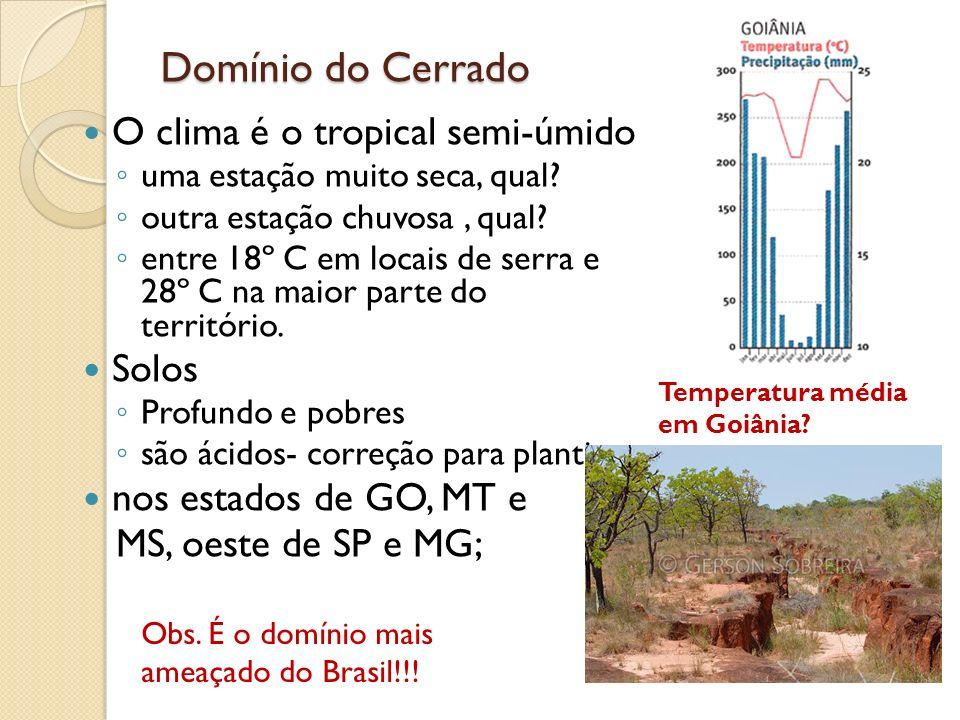 Domínio do Cerrado O clima é o tropical semi-úmido uma estação muito seca, qual? outra estação chuvosa, qual? entre 18º C em locais de serra e 28º C n