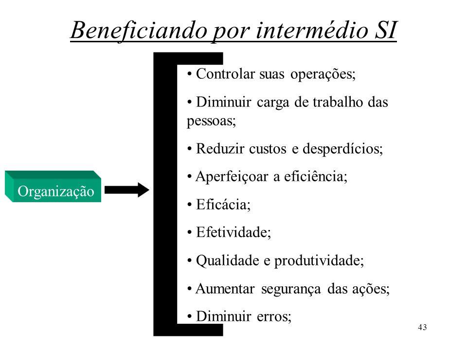 43 Beneficiando por intermédio SI Organização Controlar suas operações; Diminuir carga de trabalho das pessoas; Reduzir custos e desperdícios; Aperfei