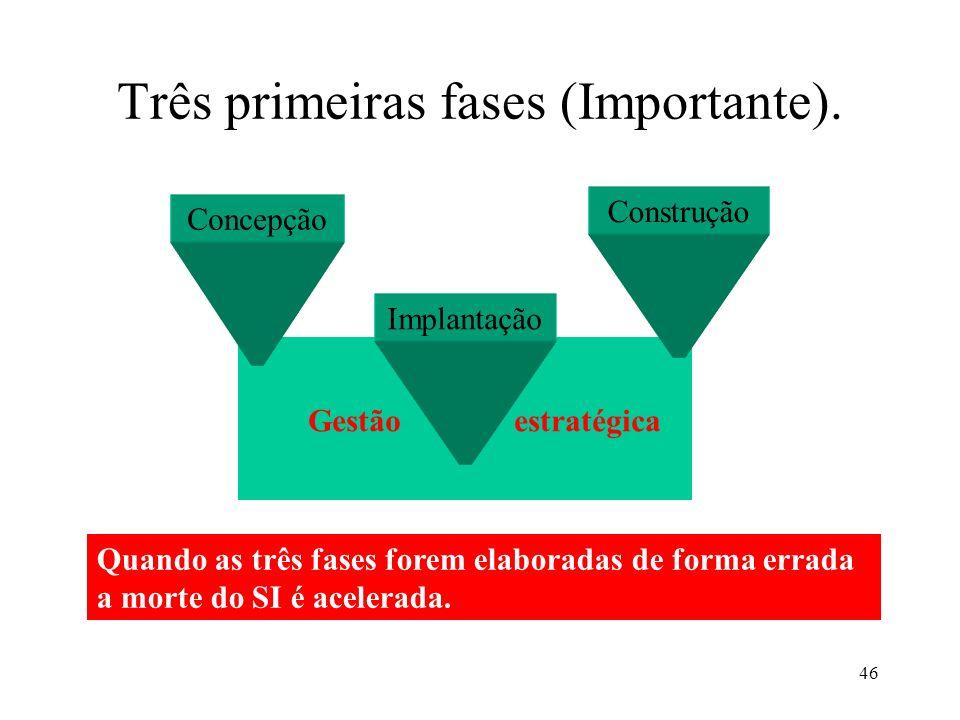 46 Gestão estratégica Três primeiras fases (Importante). Concepção Implantação Construção Quando as três fases forem elaboradas de forma errada a mort
