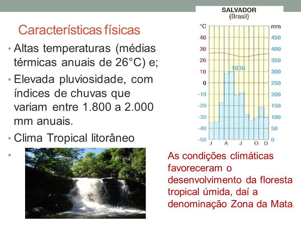 Características físicas Altas temperaturas (médias térmicas anuais de 26°C) e; Elevada pluviosidade, com índices de chuvas que variam entre 1.800 a 2.000 mm anuais.