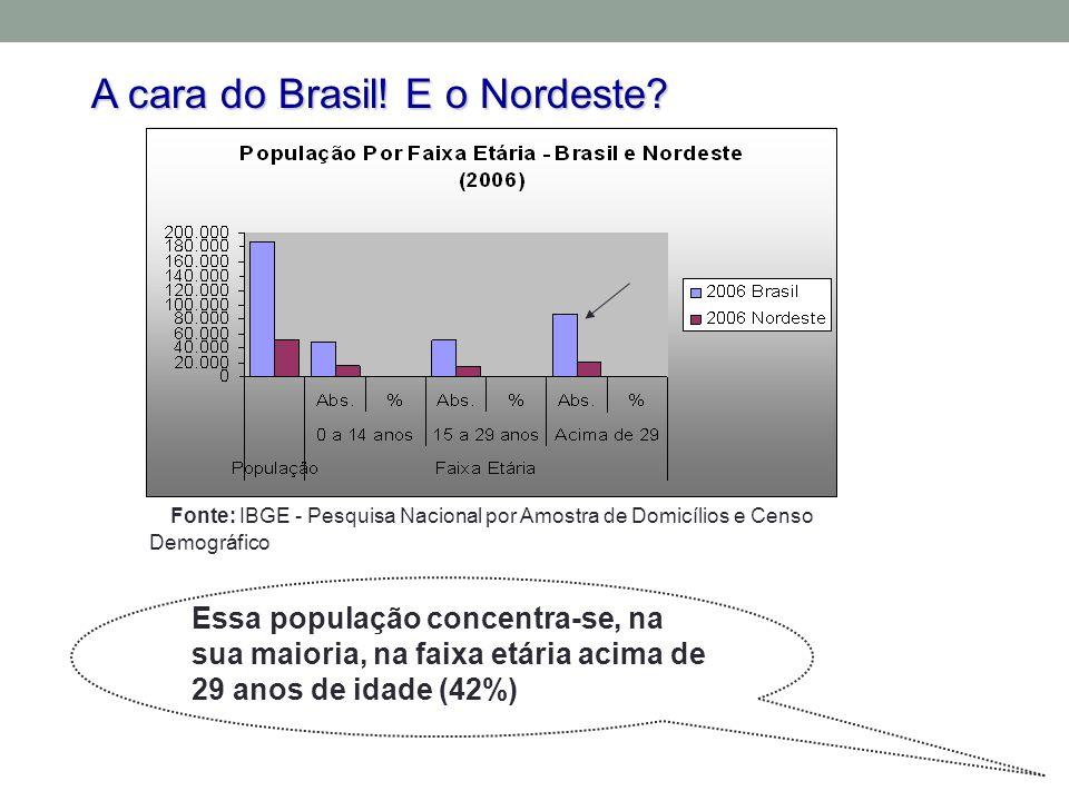 Essa população concentra-se, na sua maioria, na faixa etária acima de 29 anos de idade (42%) A cara do Brasil.