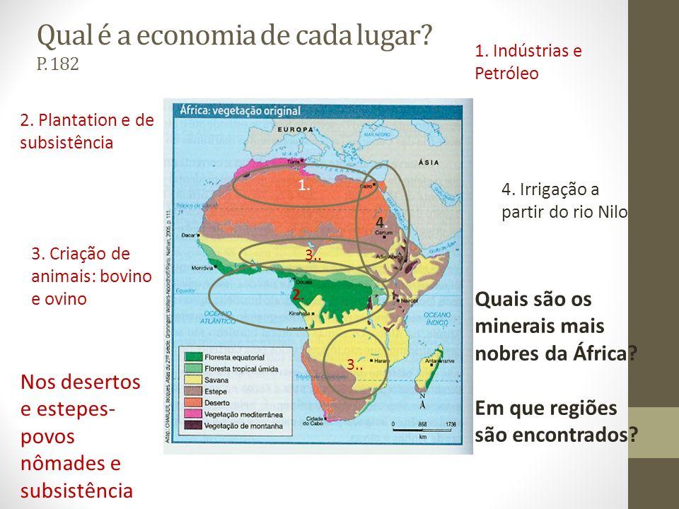 Qual é a economia de cada lugar? P. 182 1. 1. Indústrias e Petróleo 2.2. 2. Plantation e de subsistência 3.. 3. Criação de animais: bovino e ovino 3..