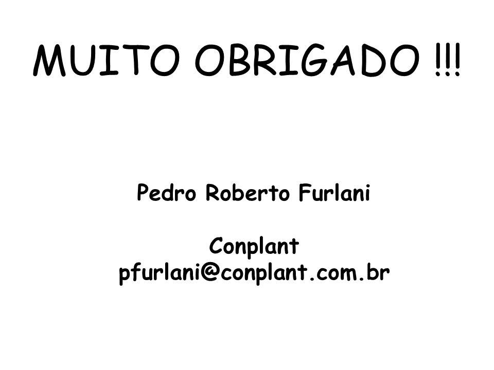 MUITO OBRIGADO !!! Pedro Roberto Furlani Conplant pfurlani@conplant.com.br