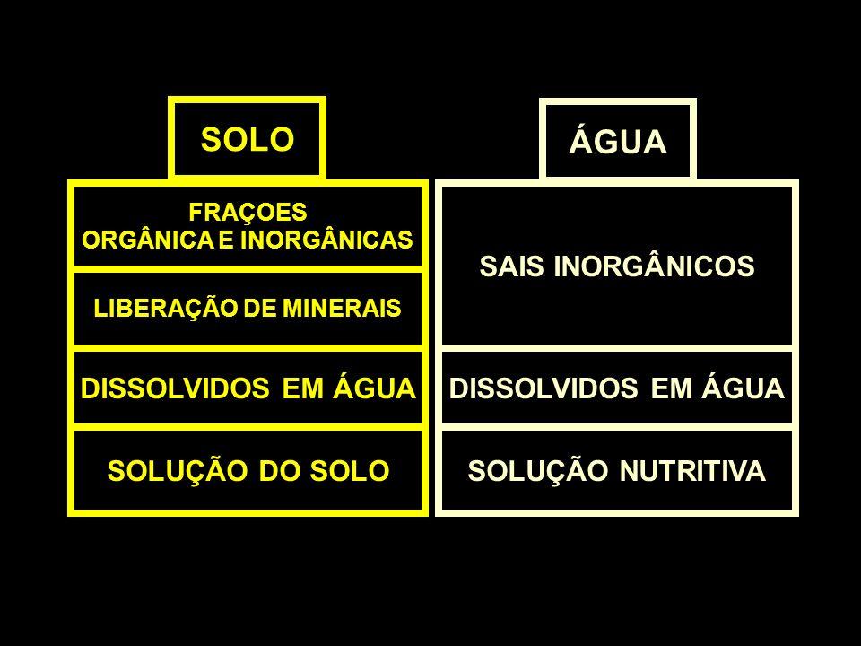 SOLO FRAÇOES ORGÂNICA E INORGÂNICAS SAIS INORGÂNICOS LIBERAÇÃO DE MINERAIS DISSOLVIDOS EM ÁGUA SOLUÇÃO NUTRITIVASOLUÇÃO DO SOLO ÁGUA