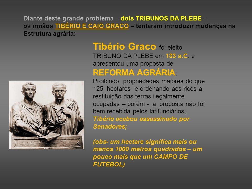 Diante deste grande problema – dois TRIBUNOS DA PLEBE – os irmãos TIBÉRIO E CAIO GRACO – tentaram introduzir mudanças na Estrutura agrária: Tibério Gr