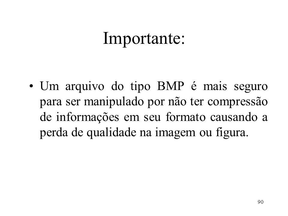 90 Importante: Um arquivo do tipo BMP é mais seguro para ser manipulado por não ter compressão de informações em seu formato causando a perda de quali