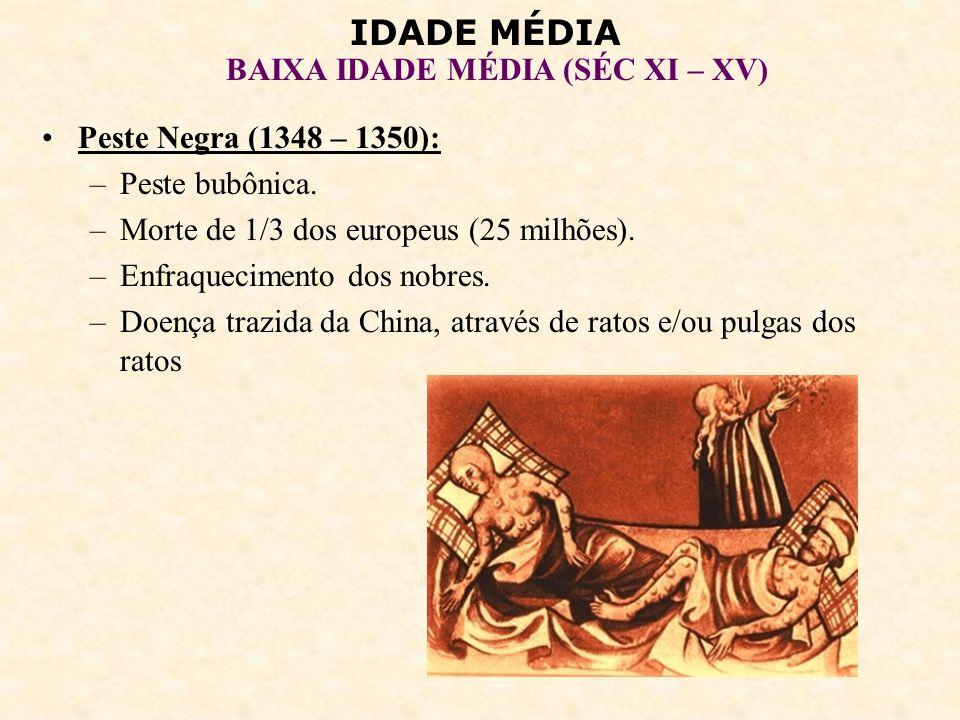 IDADE MÉDIA BAIXA IDADE MÉDIA (SÉC XI – XV) Peste Negra (1348 – 1350): –Peste bubônica. –Morte de 1/3 dos europeus (25 milhões). –Enfraquecimento dos