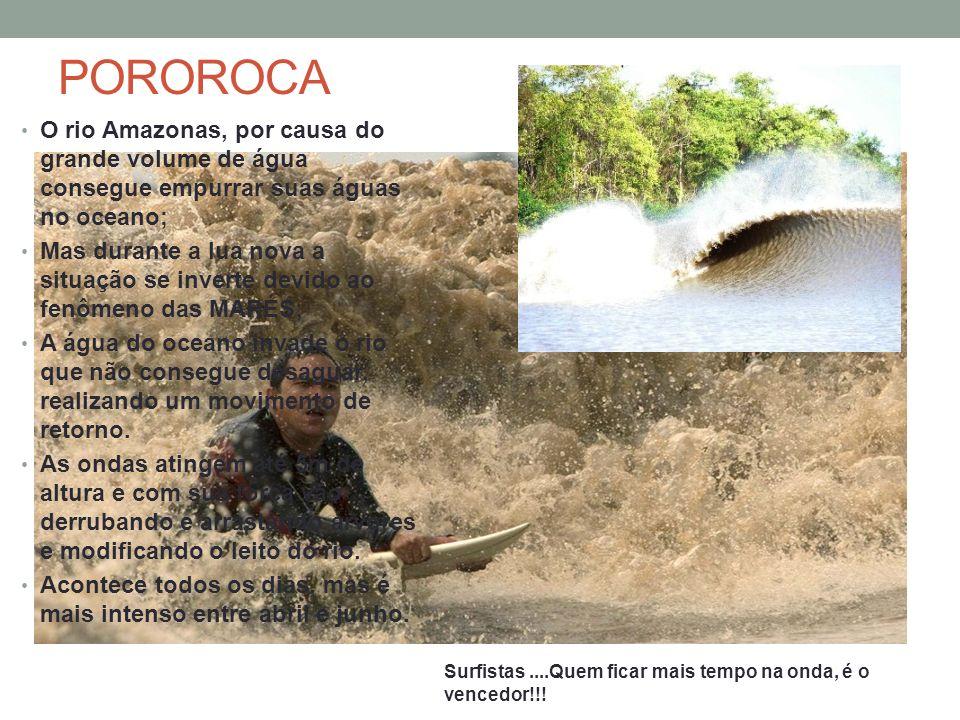 POROROCA O rio Amazonas, por causa do grande volume de água consegue empurrar suas águas no oceano; Mas durante a lua nova a situação se inverte devid