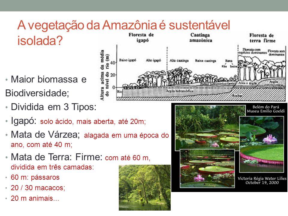 A vegetação da Amazônia é sustentável isolada? Maior biomassa e Biodiversidade; Dividida em 3 Tipos: Igapó: solo ácido, mais aberta, até 20m; Mata de
