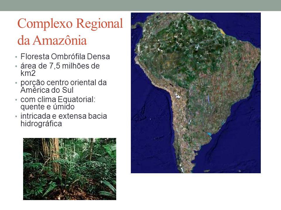 Complexo Regional da Amazônia Floresta Ombrófila Densa área de 7,5 milhões de km2 porção centro oriental da América do Sul com clima Equatorial: quent