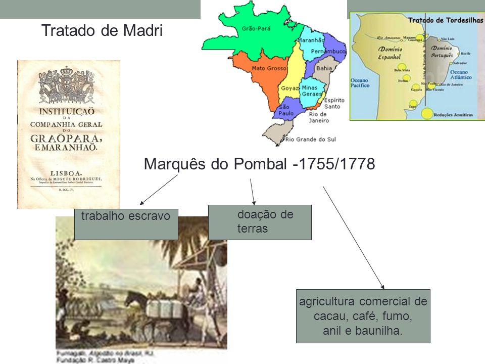 Marquês do Pombal -1755/1778 trabalho escravo doação de terras agricultura comercial de cacau, café, fumo, anil e baunilha. Tratado de Madri