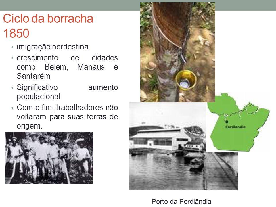 A vegetação da Amazônia é sustentável isolada.
