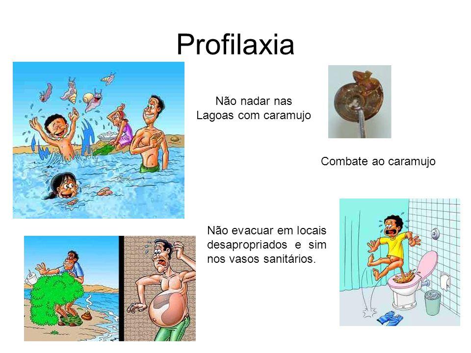Profilaxia Combate ao caramujo Não nadar nas Lagoas com caramujo Não evacuar em locais desapropriados e sim nos vasos sanitários.