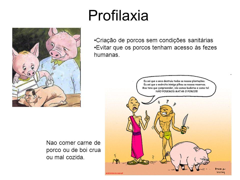 Profilaxia Criação de porcos sem condições sanitárias Evitar que os porcos tenham acesso às fezes humanas. Nao comer carne de porco ou de boi crua ou