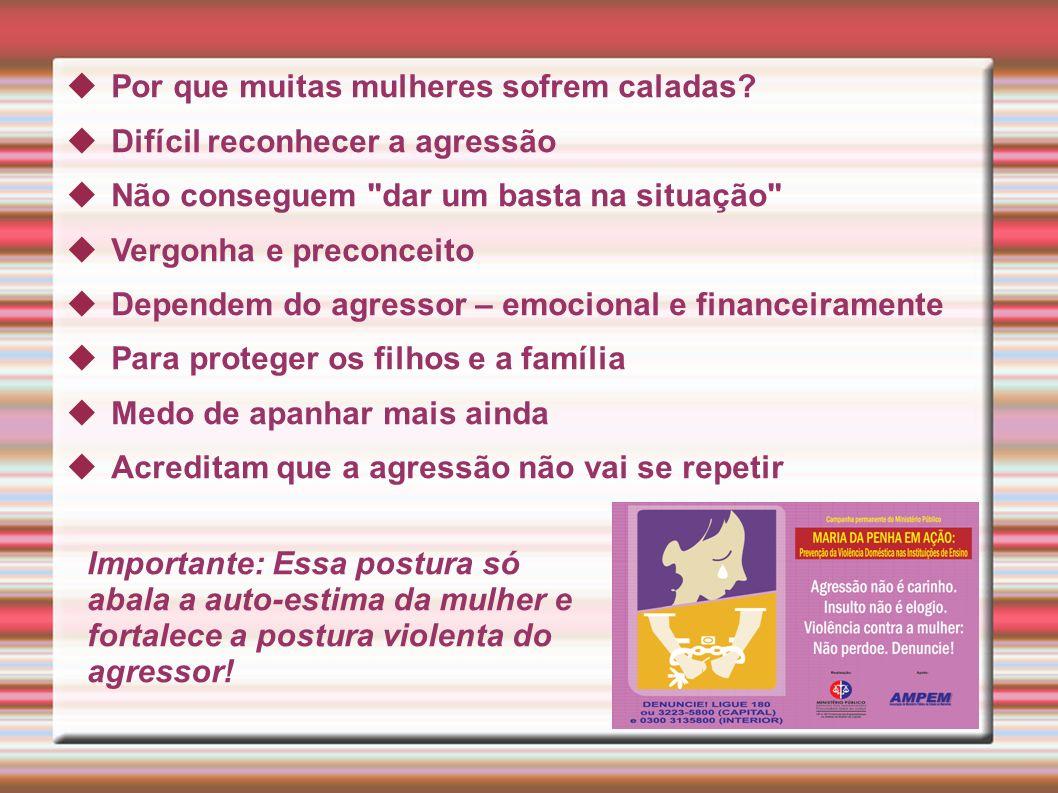 Fases da violência doméstica 1ª Fase: Tensão Manifesta-se por atritos, insultos, ameaças.