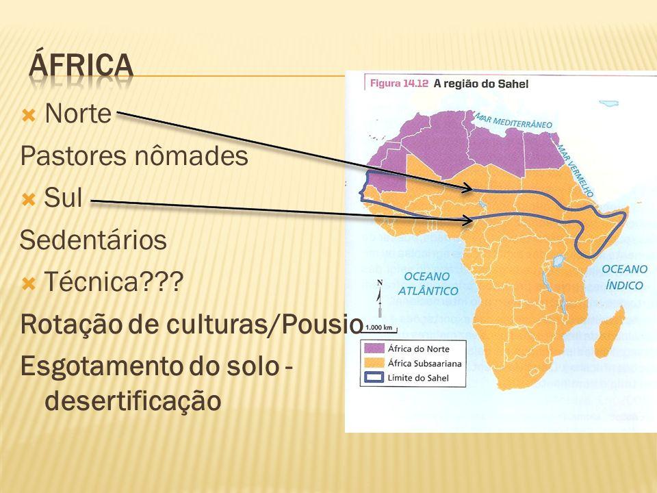 Norte Pastores nômades Sul Sedentários Técnica??? Rotação de culturas/Pousio Esgotamento do solo - desertificação