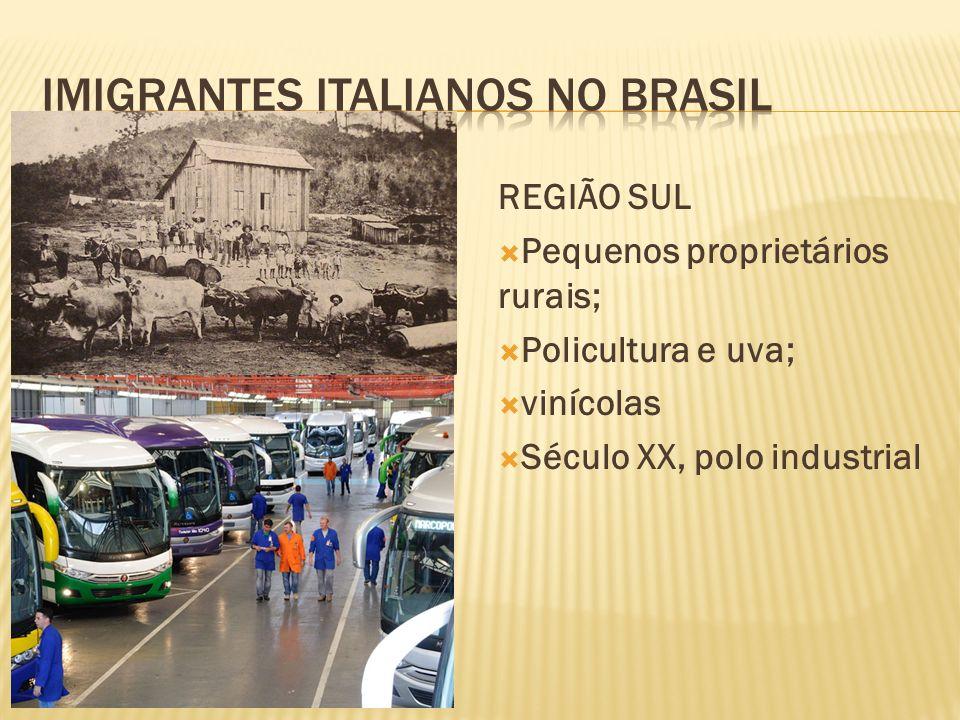 SÃO PAULO Colonato: funcionários em fazendas de café; Conflitos... Crise do café... Repulsão p/ cidade; Período da Rev. Ind. REGIÃO SUL Pequenos propr