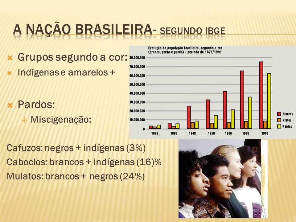 Grupos segundo a cor: Indígenas e amarelos + Pardos: Miscigenação: Cafuzos: negros + indígenas (3%) Caboclos: brancos + indígenas (16)% Mulatos: branc