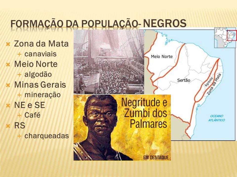 Zona da Mata canaviais Meio Norte algodão Minas Gerais mineração NE e SE Café RS charqueadas