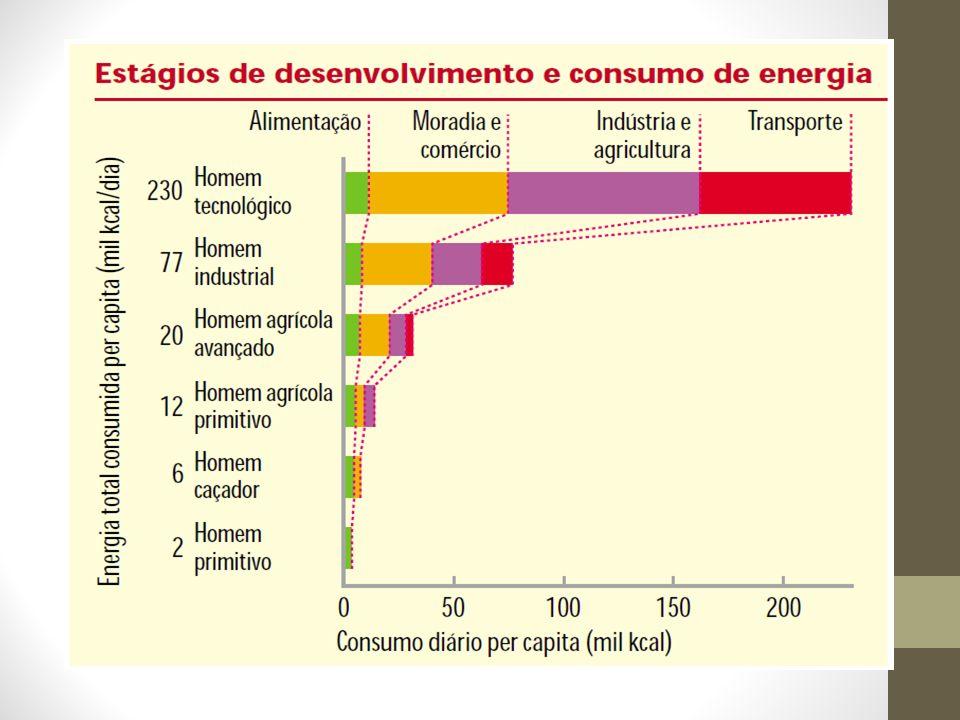 Enem – 2007 Confrontando-se as informações do texto com as da charge acima, conclui-se que a) a charge contradiz o texto ao mostrar que o Brasil possui tecnologia avançada no setor agrícola.