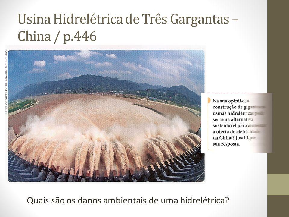 Usina Hidrelétrica de Três Gargantas – China / p.446 Quais são os danos ambientais de uma hidrelétrica?