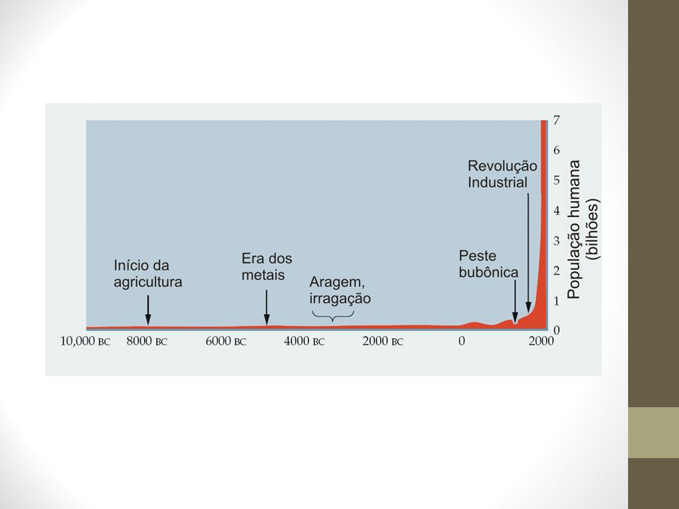 Energia Elétrica Hidreletricidade: Brasil: 81% Mundo: 16% Energia elétrica fóssil: Brasil: 9,7% Mundo: 67,7% O BR importa: 6,3% da energia ofertada.