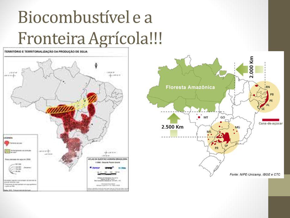 Biocombustível e a Fronteira Agrícola!!!