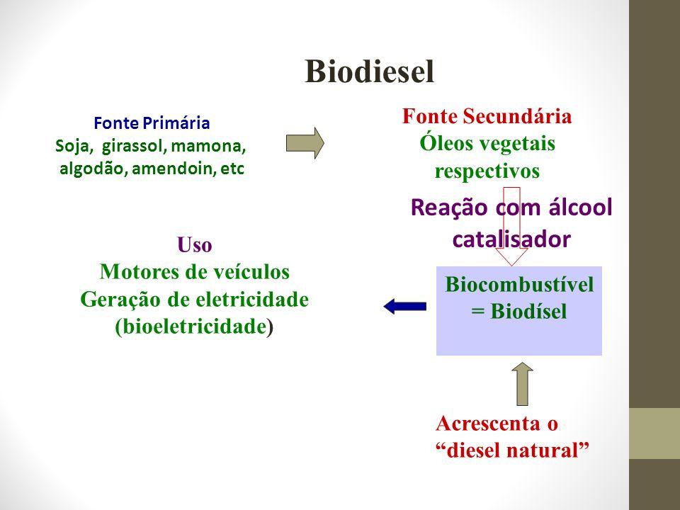 Biodiesel Fonte Primária Soja, girassol, mamona, algodão, amendoin, etc Uso Motores de veículos Geração de eletricidade (bioeletricidade) Fonte Secund