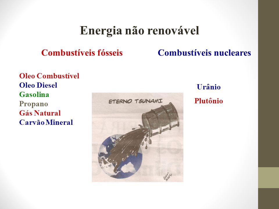 Energia Renovável HidroeletricidadeProduzida a partir da Energia Potencial Gravitacional da água Energia da biomassaProveniente da combustão ou de combustível extraido de detritos animais e vegetais (madeira, óleo vegetal, etc) Energia solarCapturada da radiação solar.Coletores solares.