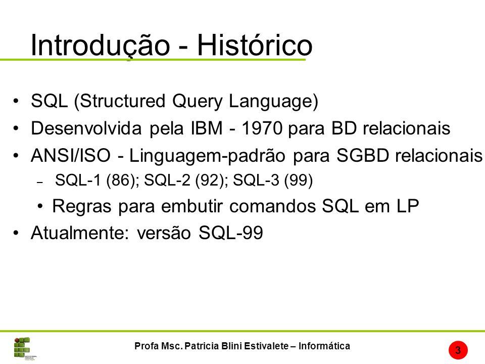 Introdução - Histórico SQL (Structured Query Language) Desenvolvida pela IBM - 1970 para BD relacionais ANSI/ISO - Linguagem-padrão para SGBD relacion