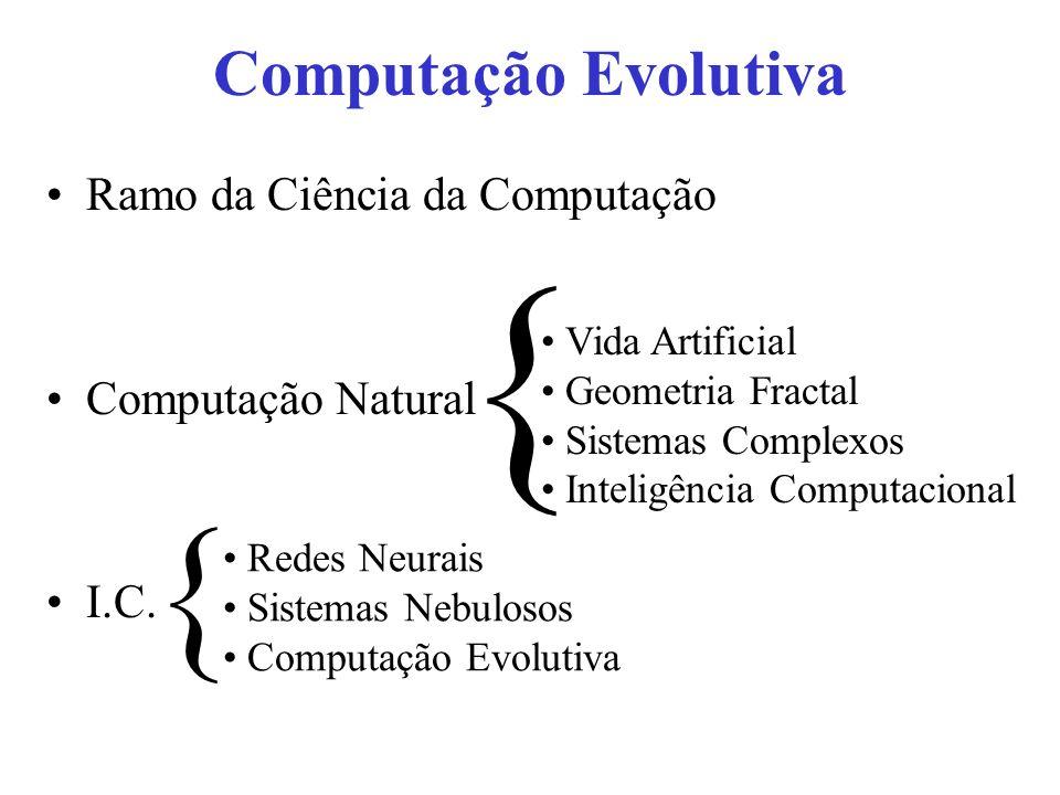 Computação Evolutiva Ramo da Ciência da Computação Computação Natural I.C. Vida Artificial Geometria Fractal Sistemas Complexos Inteligência Computaci
