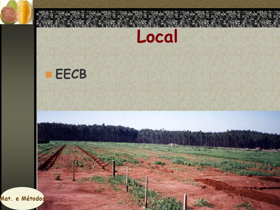 Local EECB Mat. e Métodos