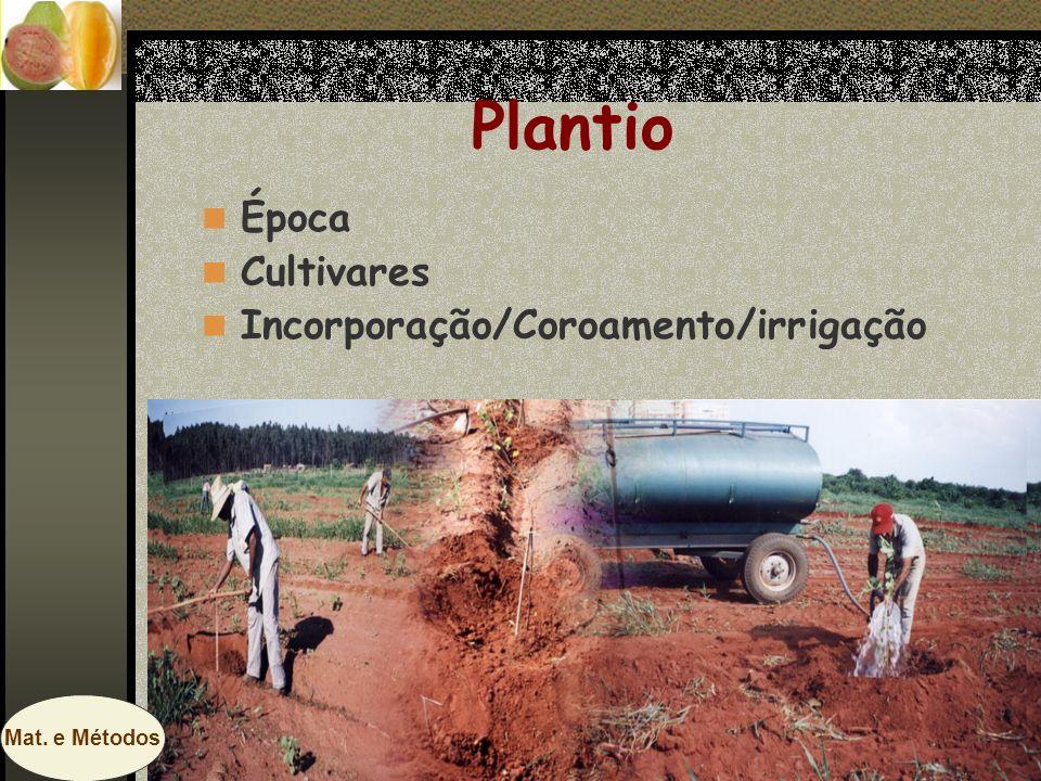 Plantio Época Cultivares Incorporação/Coroamento/irrigação Mat. e Métodos