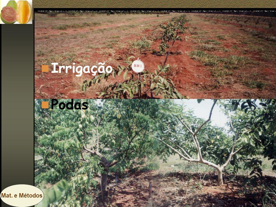 Irrigação Podas Mat. e Métodos