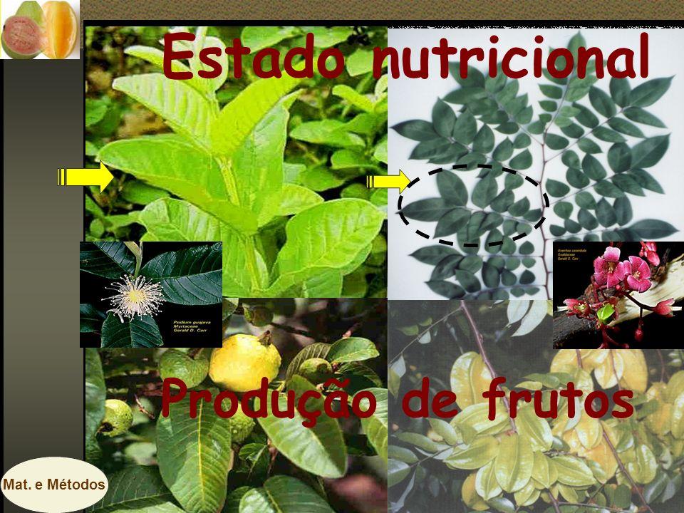 Estado nutricional Produção de frutos Mat. e Métodos