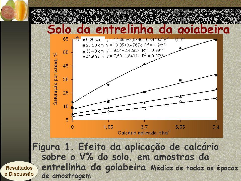 Solo da entrelinha da goiabeira Figura 1. Efeito da aplicação de calcário sobre o V% do solo, em amostras da entrelinha da goiabeira Médias de todas a